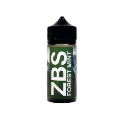 Купить ЖДЭС на соли збс/втф (zbs/wtf) лесная мята 30мл 16 мкг 2021 в Уфе в магазине Tabakos