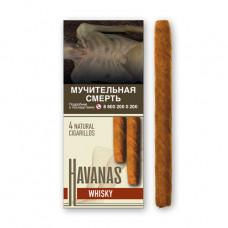 Сигариллы гавана (havanas) виски