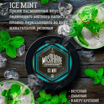 Купить Табак кальянный маст хев (must have) ледяная мята 25 гр в Уфе в магазине Tabakos