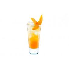 Электронное нетабачное устройство раш (rush) ледяное манго
